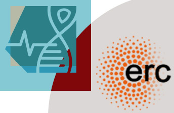 ERC and the Faculty of Medicine logos