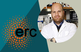 Rami Aqeilan and ERC logo